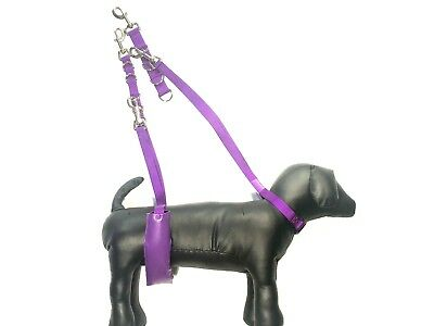 Dog Grooming Belly Strap, Noose and Extension (Extra Soft High Quality Padding F