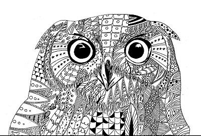 Original Art Pen Drawing Tawny Owl in Zetangle Style Owl Pen Drawing Bird Art