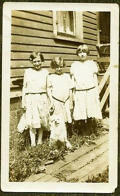 3 Cute Little Girls with Dog Teddy Snapshot