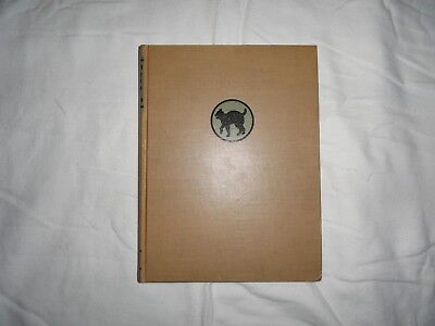 The 81st Infantry Wildcat Division In World War II  First Edition