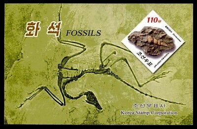 KOREA MH 2013 FOSSILIEN FOSSILS FOSSIL PREHISTORIC BOOKLET IMPERF !! RARE! m1248