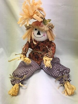 Timmy the FIBER OPTIC SCARECROW Lights Up  Fall Halloween Thanksgiving NEW