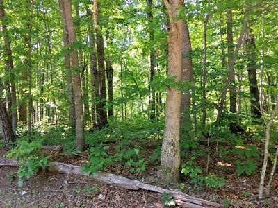 RESIDENTIAL Lot for sale - 2.4 acres-Cumberland Cove, Monterey, TN