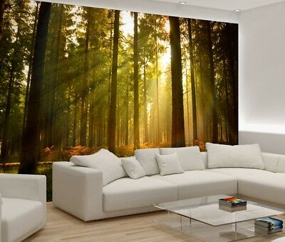 312x219cm kids Wall mural photo wallpaper Green forest scenery trees + adhesive