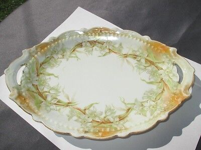 Mz Austria Oval Cheese Cracker Tray Plate Enameled White Mint Green Narcissus