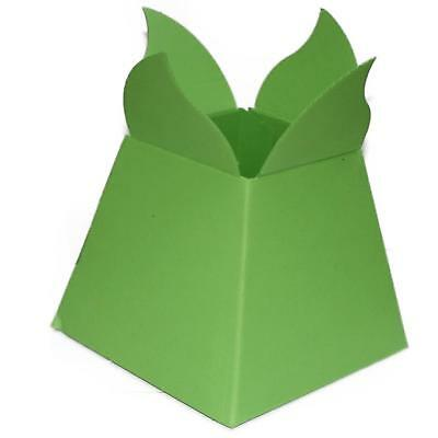 Living Vases - Florist Bouquet Box - Luxury Flower Sweet Boxes - Green Petal Top