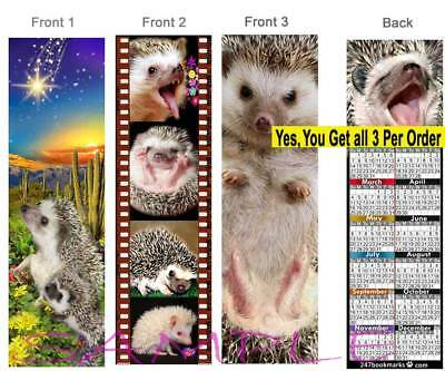 3 Set-Hedgehog 2019 CALENDAR BOOKMARK Small Pet Animal Art Fun Card Perfect Gift