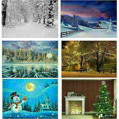 Winter Snow Scene Photography Backdrop Background Studio Props Xmas Christmas