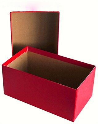 Currency Large Bill Storage Box for Bills in Dollar Toploaders or Sleeves