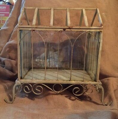 Antique Terrarium Metal Vintage Glass Stand Hinged Plant Stand Tabletop