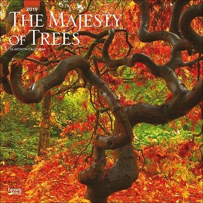 Majesty of Trees Wall Calendar 2019 Official Square 30x30cm