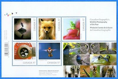 2010 Canada #2388 Wildlife Photography Of The Year Souvenir Stamp Sheet Mint-NH