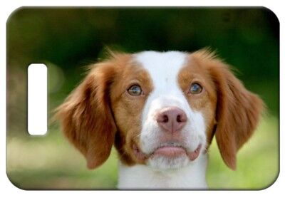 Set of 2 Brittany Spaniel Luggage Tags