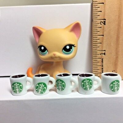 5 Pc Dollhouse Miniature Starbucks Coffee Cups-Mugs-White 1:6th Scale