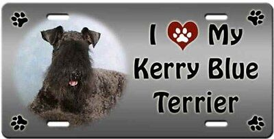 Kerry Blue Terrier License Plate - Love
