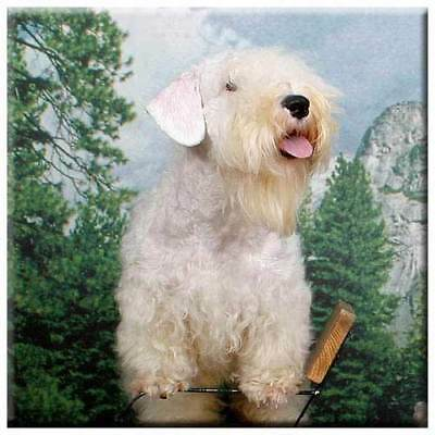 "Sealyham Terrier 4"" Decorative, Cork Backed, Ceramic Tile"