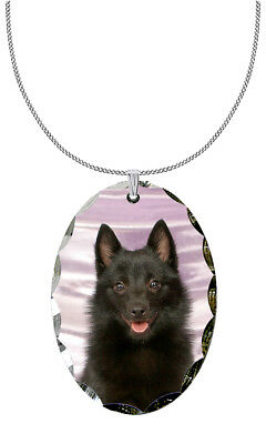 Schipperke Pendant / Necklace