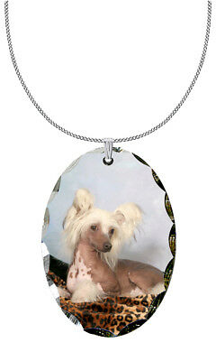Chinese Crested Pendant / Necklace
