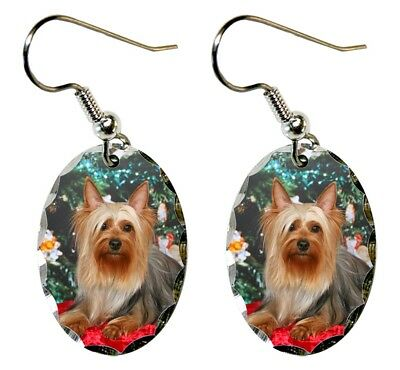 Silky Terrier Earrings