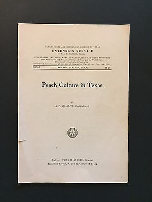 Agricultural And Mechanical College Of Texas A&m Bulletin 29 Peach Culture 1914