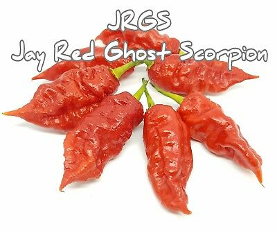 (25+) Jay's Red Ghost Scorpion JRGS Pepper Seeds