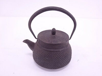 3881500: Japanese Iron Ware Nanbu Tekki Iron Kertle Tea Pot