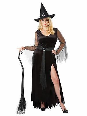 Rich Witch Sorcerer Wizard Storybook Fairytale Book Week Womens Costume Plus