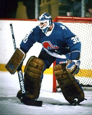 Clint Malarchuk Quebec Nordiques 8x10 Photo