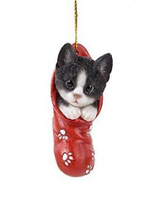 Black And White Kitten In Red Christmas Stocking Ornament