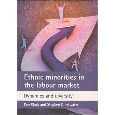 Ethnic Minorities in the Labour Market: Dynamics and Di - Paperback NEW Ken Clar