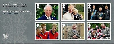 Gb 2018 Mint Hrh The Prince Of Wales 70Th Presentation Pack 564 Miniature Sheet