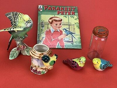 Vintage Parakeet Collection