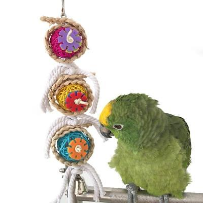 Parrot Chewing Toy Bird Beak Grinding Toy Colorful Bird Parrot Hanging Toys
