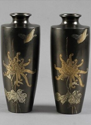 A Museum Quality a Pair of Japanese Bronze Vases.Meiji period.