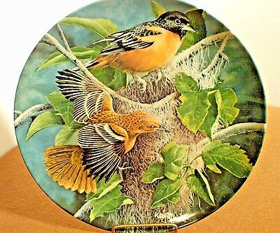 """Knowles china Kevin Daniel """" The Baltimore"""" birds of your garden"""