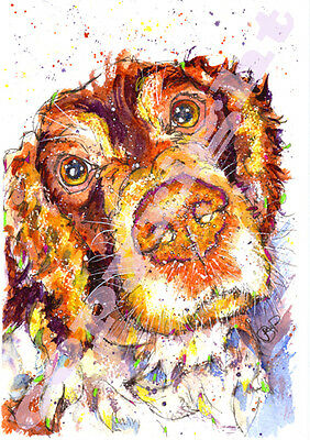 SPRINGER SPANIEL PRINT from Original Watercolour Painting Watercolor by Josie P