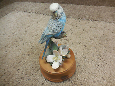 Parakeet Wind-up Music Box by the San Francisco Music Box Company