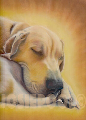 GREAT DANE Dog PRINT from an ORIGINAL PASTEL Painting Picture Art by Josie P