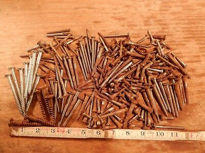 antique oval head slotted wood screws lot vintage furniture fastener hardware