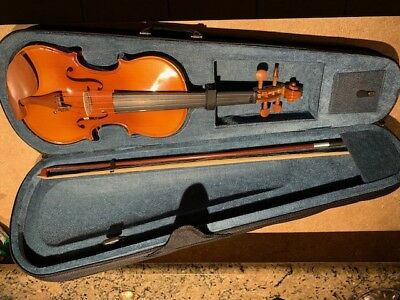 Full Size 4/4 Natural Acoustic Jujube Violin for Beginner Student Performer Y6J5
