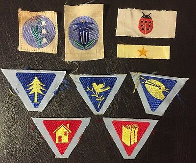 Starting Kit distintivi AGI Coccinelle - female scout badges Italy 1960's