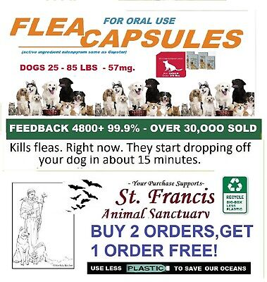 8 LRG  Same Ingredient Equal To Capstar FleaTreatment Dog GET 2 ORDERS FREE!