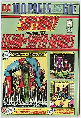 Superboy #202 VF/NM 9.0 white pages  100 Page Giant  DC  1974  No Reserve