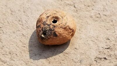 Ancient Roman-Egyptian FROG Type Fired Clay OIL LAMP, Intact, 1st - 3rd Cent. AD