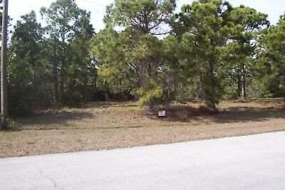 OWNER FINANCE Florida Residential Lot INTEREST ONLY - 6K Down - Full Price 16K