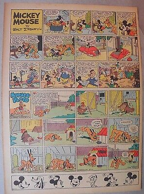 Mickey Mouse Sunday Page by Walt Disney from 8/28/1938 Tabloid Page Size