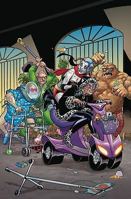 Old Lady Harley #2 DC Comics 1st Print COVER A