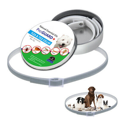 Dog Collar Tick Flea Anti Insect Mosquitoes Waterproof Long Lasting 8 Months Pro