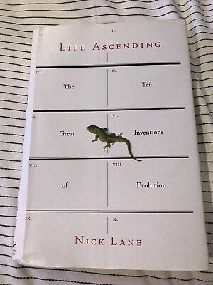 life ascending lane nick