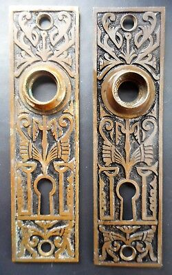 Pair Antique Eastlake Victorian Brass Door Knob Back Plates from 1870s Butterfly